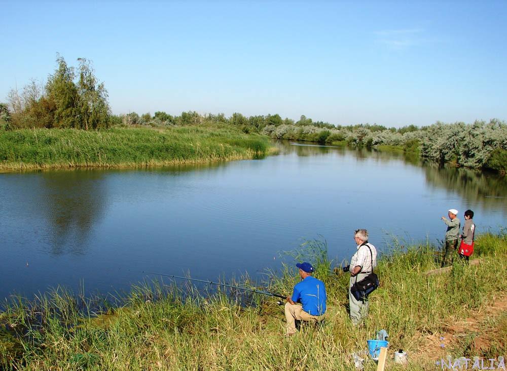 на каких озерах области платная рыбалка