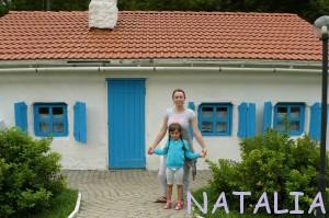 дом в лиски купить построить 987