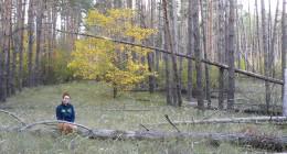 погода бабье лето новости в лиски воронежская область