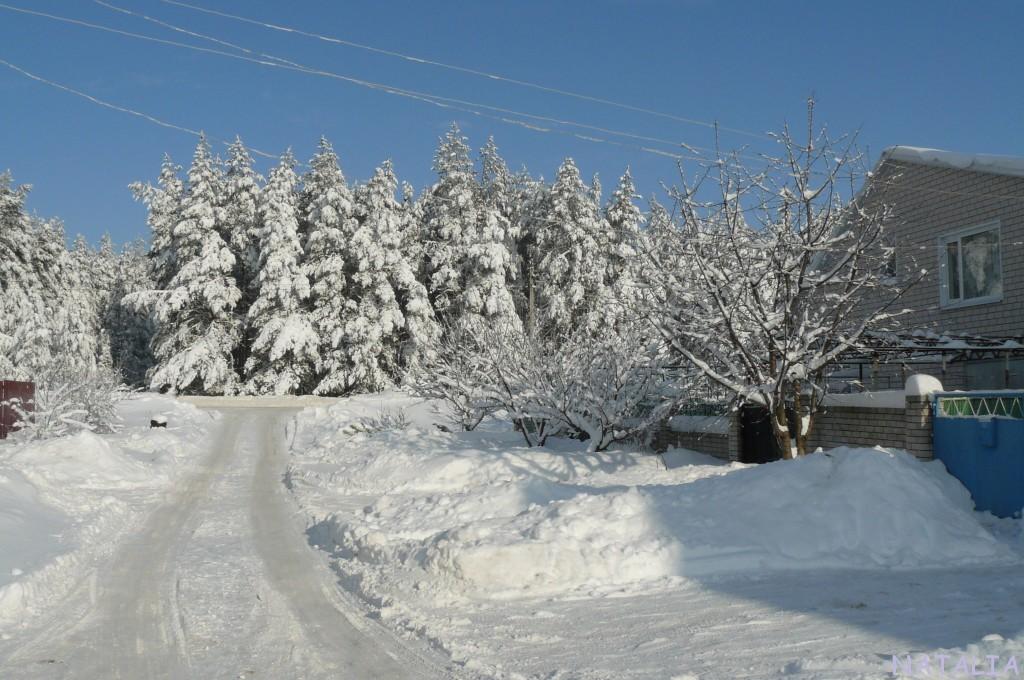 климат зима 2020 лиски воронежская область